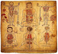 Tiibeti meditsiin