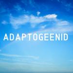 Adaptogeenid (taastajad, kohandajad)